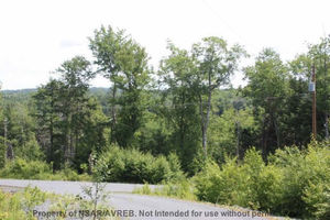 Lot 731 51 Kathleen Court, Windsor Junction (MLS 201707667)