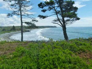 Lot 24 98 Kaakwogook Way, Clam Bay (MLS 201822364)