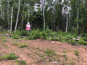 Lot 26 Bell Court, Nine Mile River (MLS 201916871)