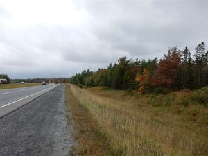 Lot Lohnes Road, Hardwood Lands (MLS 201922737)