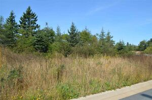 Lot 8 50 Kenyatta Drive, Eastern Passage (MLS 201926301)