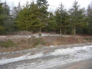 Lot 90-1 MacDonald Road, Shubenacadie (MLS 202000067)