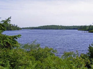 Lot 33 261 Birch Bear Run (MLS 5202471)