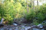 Lot 7 136 Sugarwood Court (201824070)