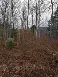 Lot 100 51 Lakeview Road (202017791)
